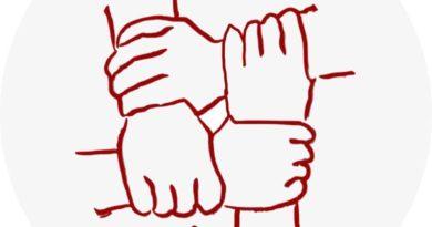 Il logo di Roma 12 Solidale