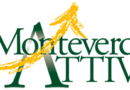 Monitoraggio dei cassonetti a Monteverde;Misurazioni e foto per 30 gg
