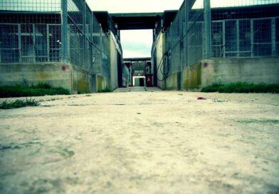I prigionieri dell'ex cinodromo di Ponte Marconi
